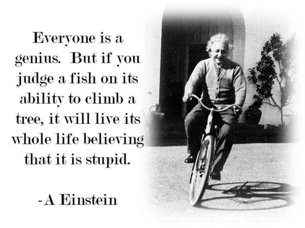 quote genius